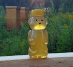 Plastic Honey Bear Jar