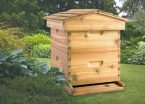 backyard beekeepers package